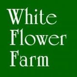 White flower farm coupons promo codes for september 2018 white flower farm coupon codes mightylinksfo
